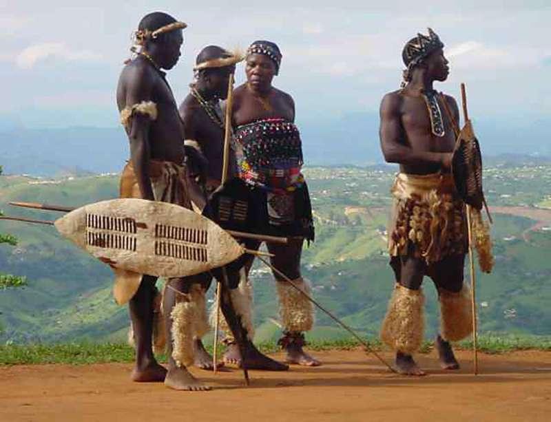 African 25 cm zulu warrior shield zulu chief zulu dance zulu warrior stopboris Images