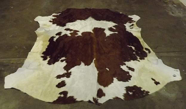 Brown and white Nguni cow hide