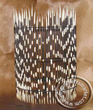Porcupine quill wall lamp shade